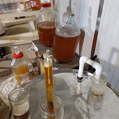 Wild Bunch Brewing Co. - Justin Brummer