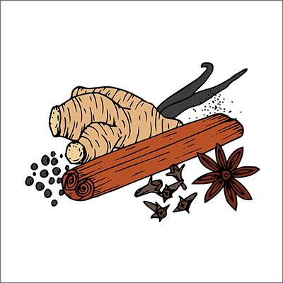 Spices Illustration